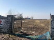 فروش زمین مسکونی 1000 متر در چاف و چمخاله در شیپور