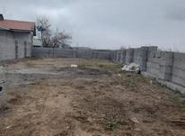 فروش زمین مسکونی 204 متر در رضوانشهر در شیپور-عکس کوچک