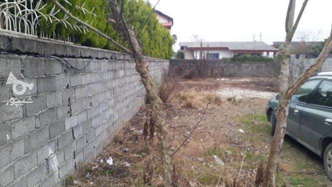 زمین داخل بافت مسکونی 200 متر در آهنگرکلا در گروه خرید و فروش املاک در مازندران در شیپور-عکس2