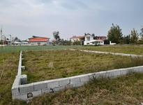 فوری 200 متر زمین   در شیپور-عکس کوچک
