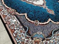 فرش دربار کاشان مدل هالیدی طرح 700 شانه در شیپور