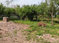 150 متر زمین مسکونی سنددار در نخجیر در شیپور-عکس کوچک