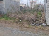 150 متر زمین مسکونی سنددار در نخجیر کلایه در شیپور-عکس کوچک