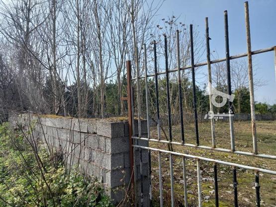 فروش زمین  2000 متر در آمل در گروه خرید و فروش املاک در مازندران در شیپور-عکس5