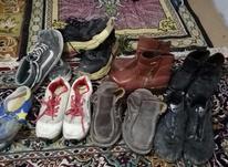 کفش کارکرده  در شیپور-عکس کوچک
