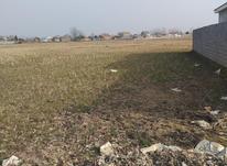 زمین مسکونی 250 متر در محدوده خشکبیجار در شیپور-عکس کوچک