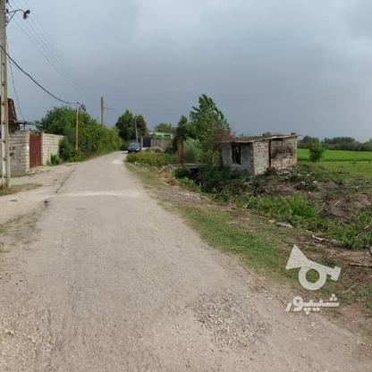 6600متر زمین در آبکسر در گروه خرید و فروش املاک در مازندران در شیپور-عکس7