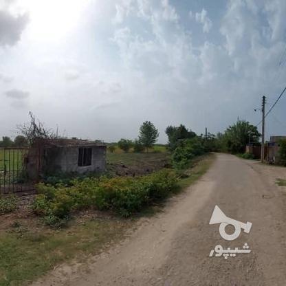 6600متر زمین در آبکسر در گروه خرید و فروش املاک در مازندران در شیپور-عکس3
