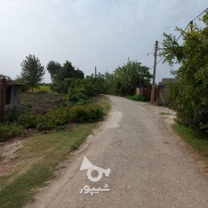 6600متر زمین در آبکسر در گروه خرید و فروش املاک در مازندران در شیپور-عکس2
