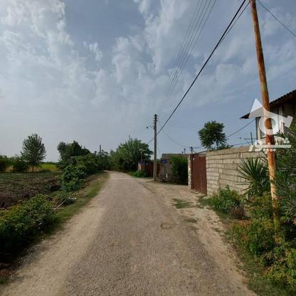 6600متر زمین در آبکسر در گروه خرید و فروش املاک در مازندران در شیپور-عکس11