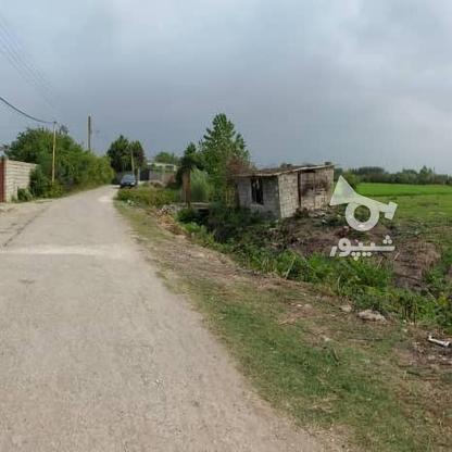 6600متر زمین در آبکسر در گروه خرید و فروش املاک در مازندران در شیپور-عکس6