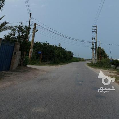 6600متر زمین در آبکسر در گروه خرید و فروش املاک در مازندران در شیپور-عکس5
