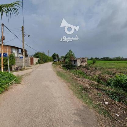 6600متر زمین در آبکسر در گروه خرید و فروش املاک در مازندران در شیپور-عکس12