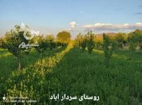 زمین مناسب خانه باغ در روستای سردار اباد در شیپور-عکس کوچک