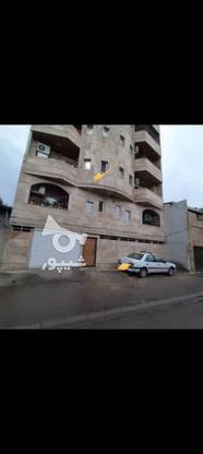 آپارتمان123 متری در دخانیات در گروه خرید و فروش املاک در مازندران در شیپور-عکس3