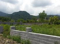 فروش زمین مسکونی 250 متر در چالوس . سنگوارث در شیپور-عکس کوچک