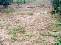 زمین 400متری مسکونی روستا واسکس در شیپور-عکس کوچک