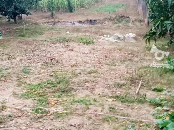 زمین 400متری مسکونی روستا واسکس در گروه خرید و فروش املاک در مازندران در شیپور-عکس14