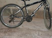 دوچرخه دنده ای فوق العاده در شیپور-عکس کوچک