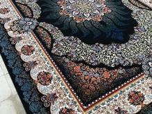 فرش دربار کاشان سودا و هیوا طرح 700 شانه در شیپور