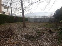250 متر زمین با مجوز ساخت / ونوش خیابان بهار  در شیپور