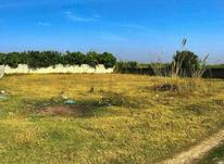 فروش زمین 200 متر در بابل در شیپور-عکس کوچک