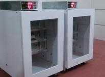 دستگاه جوجه کشی 126 تایی اتومات در شیپور-عکس کوچک