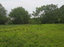 فروش زمین مسکونی 1800 متر در تنکابن خرم آباد در شیپور-عکس کوچک