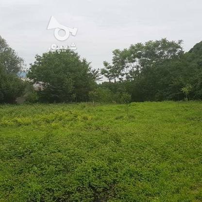 فروش زمین مسکونی 1800 متر در تنکابن خرم آباد در گروه خرید و فروش املاک در مازندران در شیپور-عکس1
