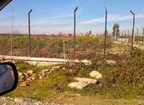 فروش زمین کشاورزی 2000 متر در ششصد دستگاه در شیپور-عکس کوچک
