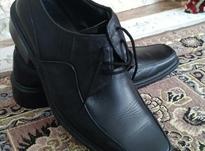 کفش چرم اصل مردانه سایز 41 در شیپور-عکس کوچک