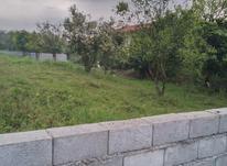 زمین مسکونی 290 متر لتاک جاده دوهزار  در شیپور-عکس کوچک