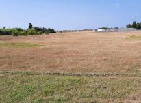 فروش زمین کشاورزی 1050 متر   در شیپور-عکس کوچک