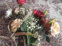 گل زیبا وشیک ولمسی در شیپور-عکس کوچک