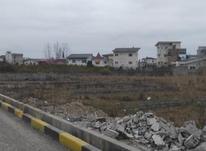 فروش زمین تجاری سند دار 260 متر در چالوس در شیپور-عکس کوچک
