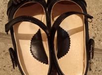 کفش شیک و نو و زیبا در شیپور-عکس کوچک