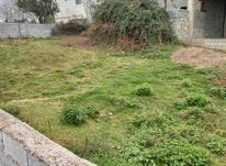 زمین مسکونی 225 متر آمل در شیپور-عکس کوچک