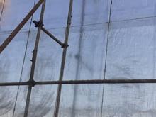پخش و نصب ایزوگام احمدی در شیپور
