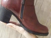 کفش چرم  زنانه در شیپور-عکس کوچک