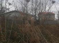 زمین مسکونی در بندر کیاشهر در شیپور-عکس کوچک