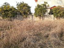 فروش زمین مسکونی 570 متر در نور در شیپور