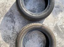 یک حلقه لاستیک سمندی یزد 100درصد در شیپور-عکس کوچک