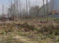 950 متر زمین مسکونی سنددار در دیزبن پایین در شیپور-عکس کوچک