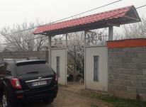 فروش زمین مسکونی 6000 متر دور دیوار در شیپور-عکس کوچک