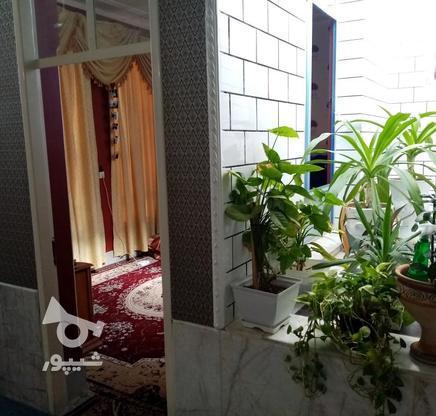 فروش ویلا 300 متر در جهرم در گروه خرید و فروش املاک در فارس در شیپور-عکس10