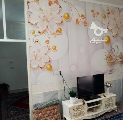 فروش ویلا 300 متر در جهرم در گروه خرید و فروش املاک در فارس در شیپور-عکس8