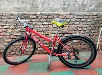 دوچرخه 24 سالم میباشد  در شیپور-عکس کوچک