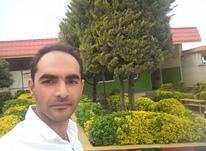 آماده بکار سرایداری،باغ،ویلاو... در شیپور-عکس کوچک