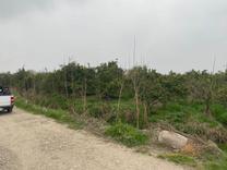 فروش زمین کشاورزی 360 متر در قائم شهر قراخیل در شیپور