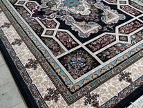فرش دربار کاشان مدل خزان و نسترن طرح 700 شانه در شیپور